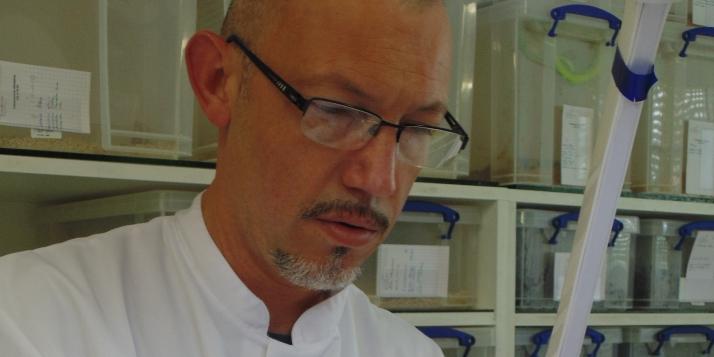 Rudy Fourmy, fondateur d'Alphabiotoxine, en pleine traite de venin sur Vipère du Gabon (Bitis gabonica) – Afrique de l'est (c) C. Vanbellingen – Alphabiotoxine Laboratory.