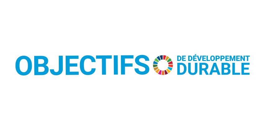 17 Objectifs de Développement Durable (c) ONU