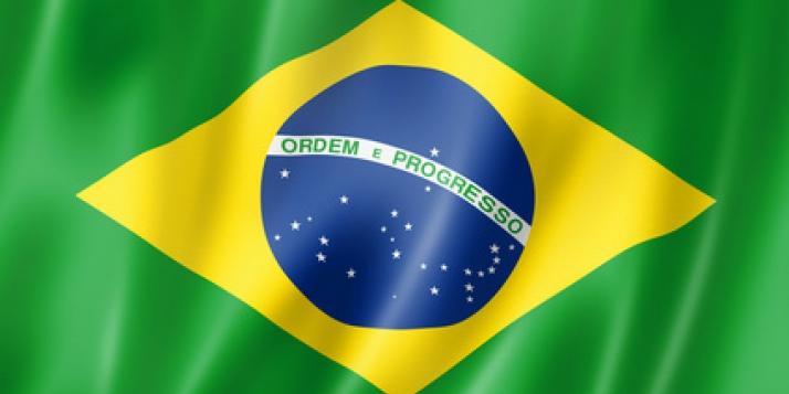 drapeau brésilien - cliquer pour agrandir