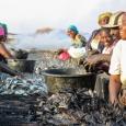 Les femmes de l'halieutique à Joal-Fadiouth - cliquer pour agrandir
