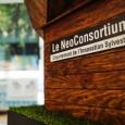Danielle Gutman Hopenblum - 'Le NeoConsortium'  - cliquer pour agrandir
