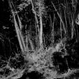 """""""Memory Lane"""" de Felix Luque Sanchez - cliquer pour agrandir"""