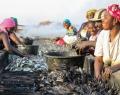 Les femmes de l'halieutique à Joal-Fadiouth