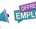 WBI recrute un(e) assistant(e) pour un contrat de remplacement (temps plein)